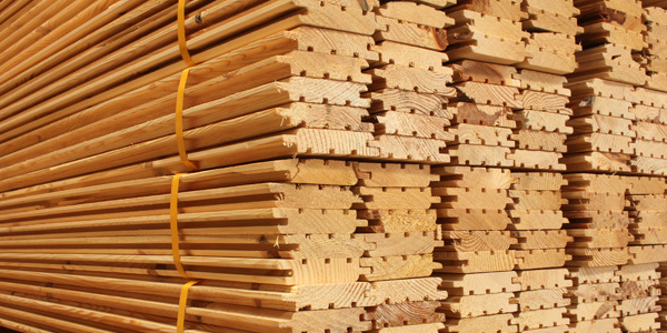 Timber Sales Assistant