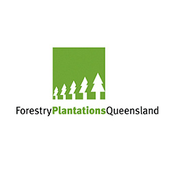 Forestry Plantations Queensland